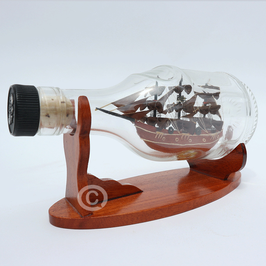 mô hình thuyền trong chai