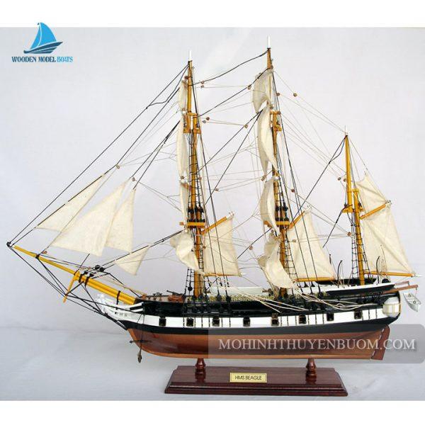mô hình thuyền gỗ hms beagle