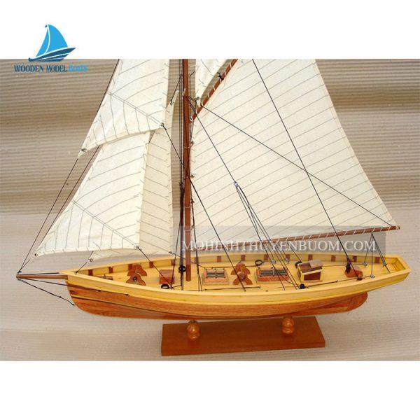 thuyền buồm puritan wood