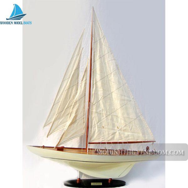 Thuyền Buồm Shamrock Painted Caramel